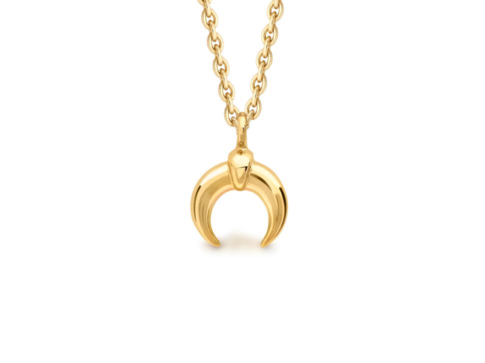 Missoma horn necklace