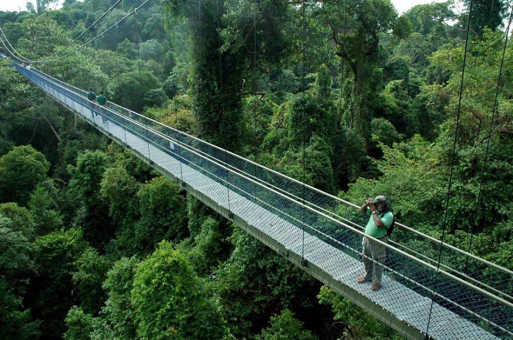 bukit timah singapore