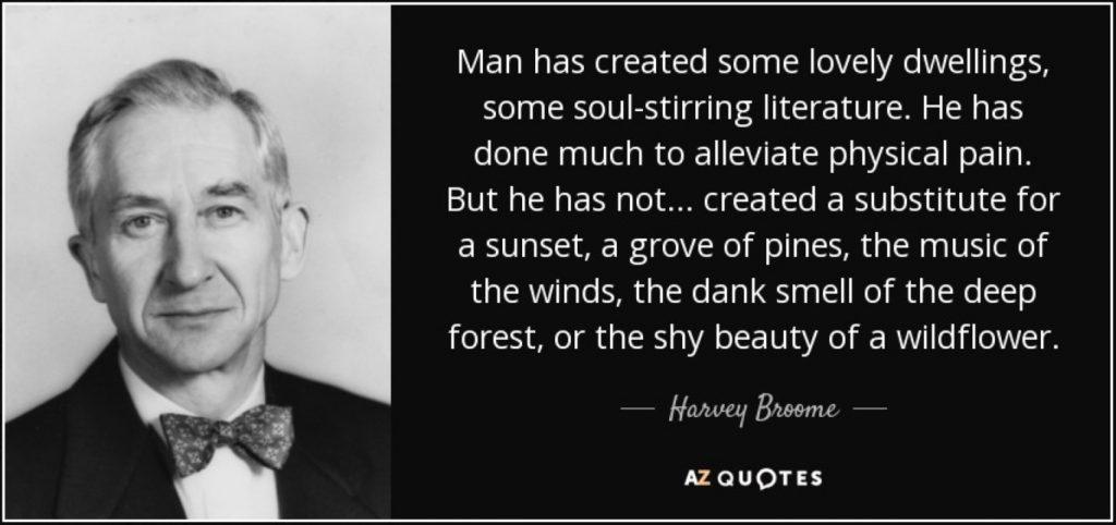 harvey broome
