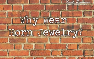 Why horn jewelry?