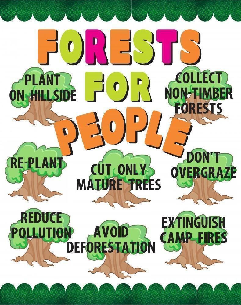 preserving the forest