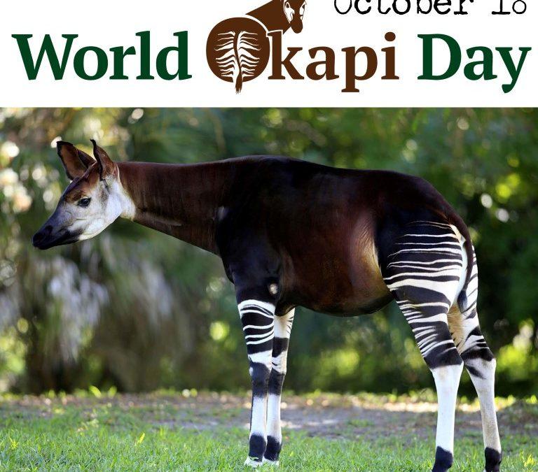 18 October – World Okapi Day