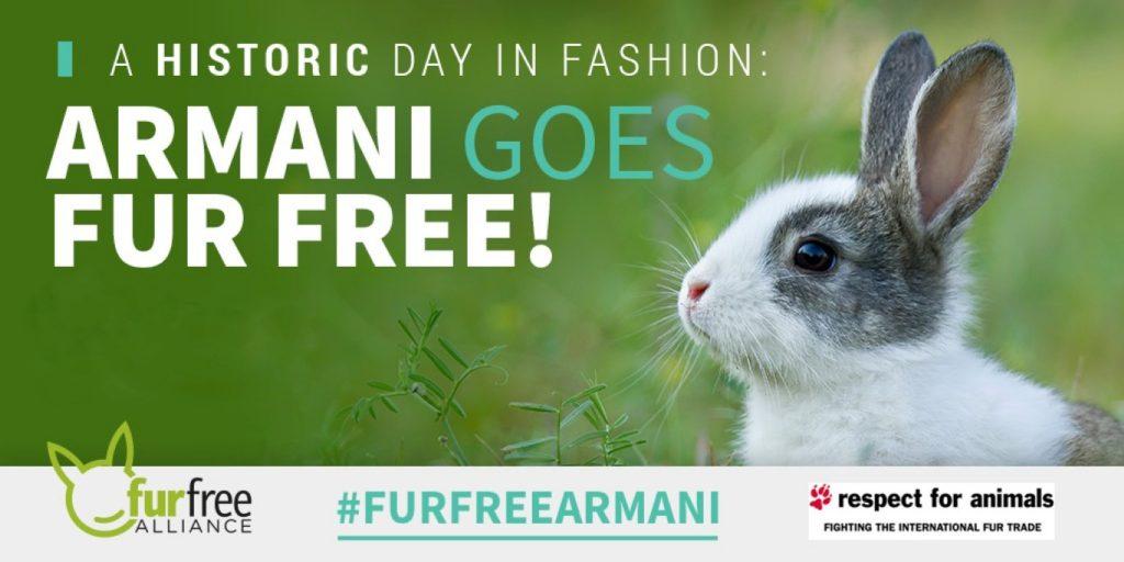 fur free luxury brands
