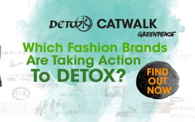 What is Greenpeace Detox catwalk Campaign?